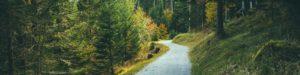 cropped-walking-trail-1031654_1920-2.jpg